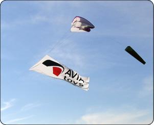 Флаг на воздушном змее